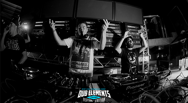 Aftermovie del Dub Elements & Friends Festival
