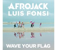 Candidato 18. Afrojack + Luis Fonsi = Wave Your Flag