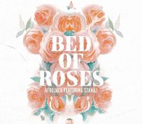 Candidato 19. △ Afrojack – Stanaj = Bed Of Roses