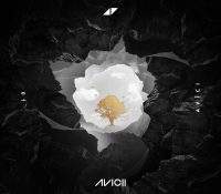 Candidato 23. Avicii + Sandro Cavazza = Without You