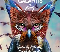 Candidato 13. △ Galantis + Throttle = Tell Me You Love Me