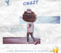 Candidato 19. ▽ Lost Frequencies + Zonderling = Crazy