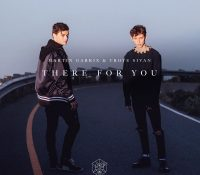 Candidato 23. Martin Garrix + Troye Sivan = There For You