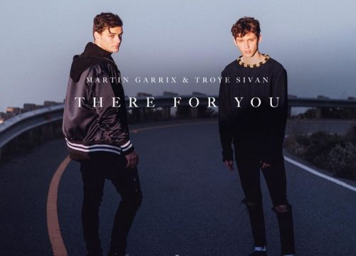 Martin Garrix + Troye Sivan = There For You