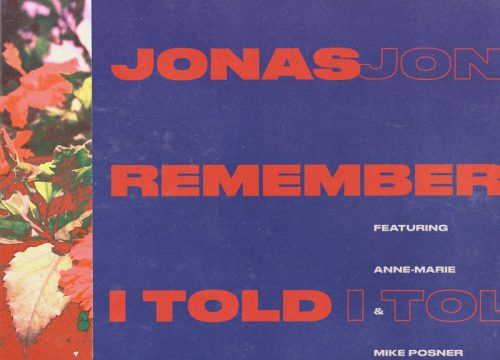 Nick Jonas - Anne Marie + Mike Posner = Remember I Told You