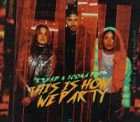 Candidato 23. ✪ R3hab + Icona Pop = This Is How We Party
