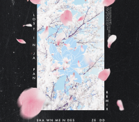 Candidato 22. ▽ Shawn Mendes = Lost in Japan (Zedd Remix)