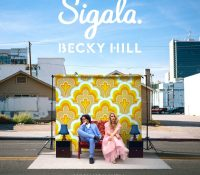 Candidato 17. △ Sigala + Becky Hill = Wish You Well