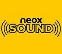 Neox Sound Festival queda aplazado hasta nuevo aviso