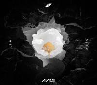 """""""Lonely Together"""", el trabajo de Avicii junto a Rita Ora, ya tiene videoclip"""