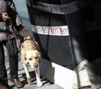 Un taxista no acepta pasajeros invidentes con su perro