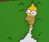 Homer utiliza un GIF de él mismo en el último capítulo de Los Simpsons