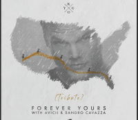 "Kygo y Sandra Cavazza lanzan ""Forever Yours (Avicii Tribute)"""