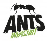 Verano 2020 en Ushuaia: ANTS ANUNCIAN SU REGRESO!