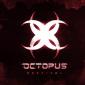 OCTOPUS FESTIVAL 2020