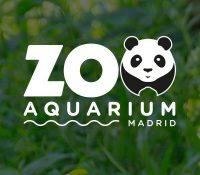 El zoo de Madrid pide ayuda para elegir el nombre del nuevo elefante
