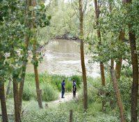 Se busca un cocodrilo del Nilo en Valladolid