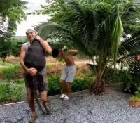 Un lagarto gigante se come un a un pavo de Frank Cuesta y este le da caza