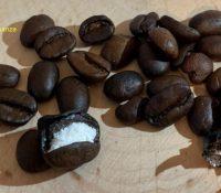 Interceptan un cargamento de cocaína oculto en granos de café