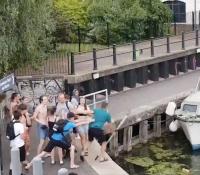 Un grupo de jóvenes ataca a los cisnes de un canal y luego a un vecino de la zona