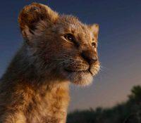 Barry Jenkins dirigirá la secuela de 'The Lion King'