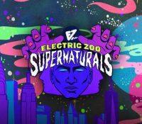 Electric Zoo desvela su primera fase de artistas para 2021