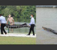 Un hombre muere tras ser atacado por un cocodrilo mientras nada desnudo en la laguna mexicana.