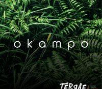 TERRAE SE PRESENTAN CON 'OKAMPO'