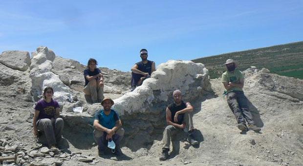Histórico descubrimiento paleontológico en Teruel