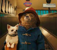 El rodaje de Paddington 3' comenzará en 2022